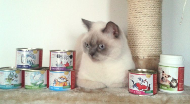 anifit katzenfutter kaufen